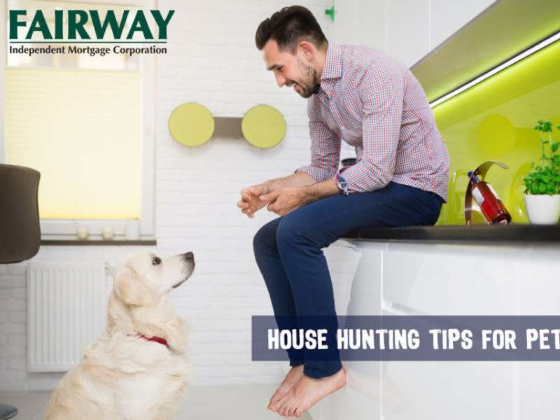 3 House Hunting Tips for Pet Owners