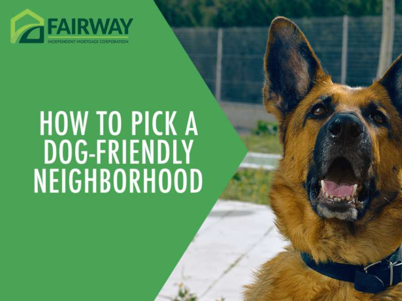 How to Pick a Dog-Friendly Neighborhood